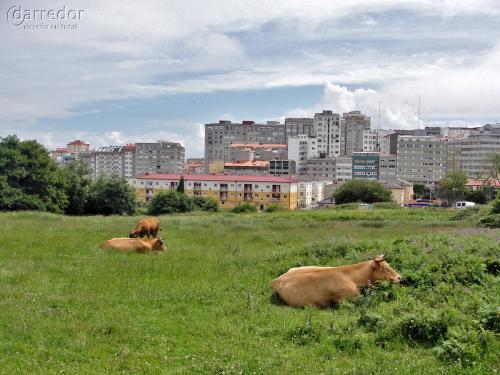 Excursión Meicende-A Coruña